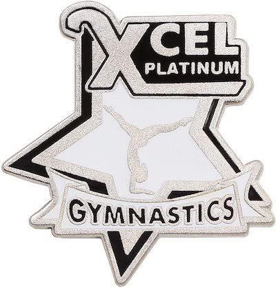 Xcel Platinum Requirements